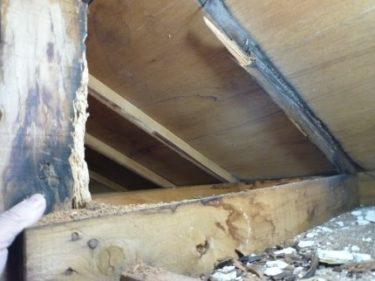 駿河区で玄関屋根からの雨漏りの調査依頼~内装リフォームを検討へ