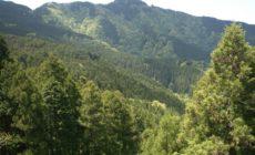 ☆健康的な暮らしを支えてくれる、木の家の魅力!!